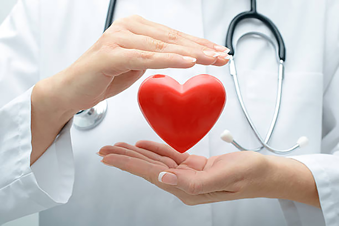 Heart and Vascular Fund